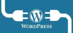 Wordpress niveles